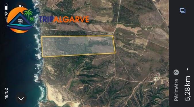 Tripalgarve Aljezur 35 ha TARM0076T #tripalgarve #plot #seaview #ruin #agriculture #aljezur #property (12)
