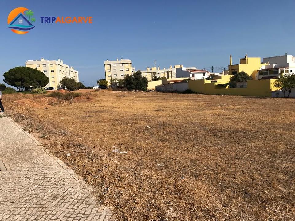 TRIPALGARVE 5960 m² TARM0054T (3)