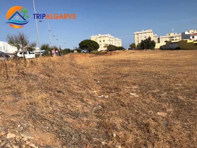 TRIPALGARVE 5960 m² TARM0054T (4)