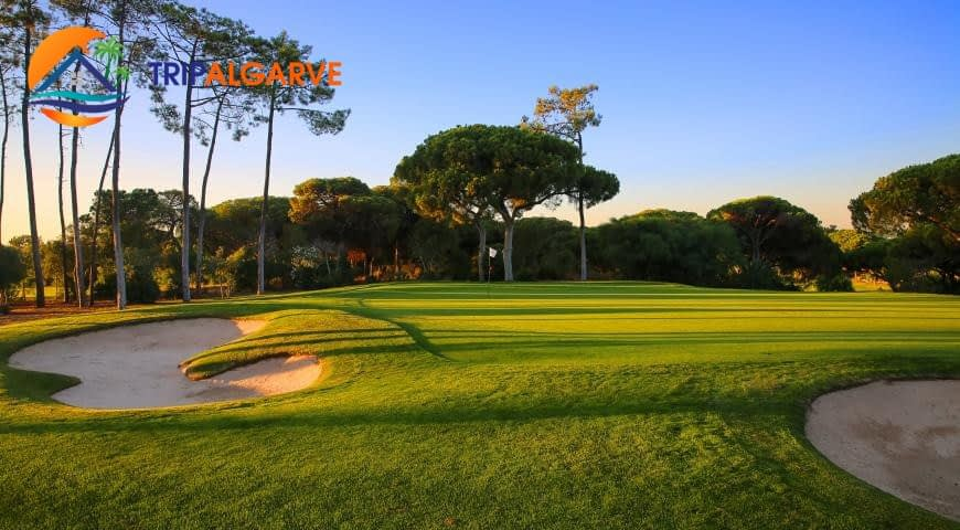 371124_golf_old_course