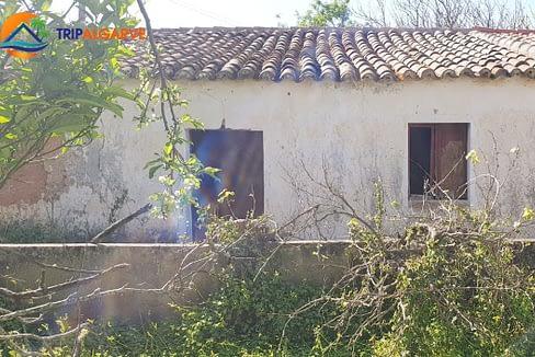 Tripalgarve Ferreiras TARM0073T (19)