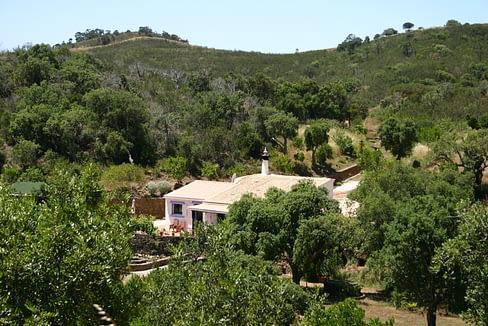 Tripalgarve immobilier albufeira algarve portugal TANH0007Q_7