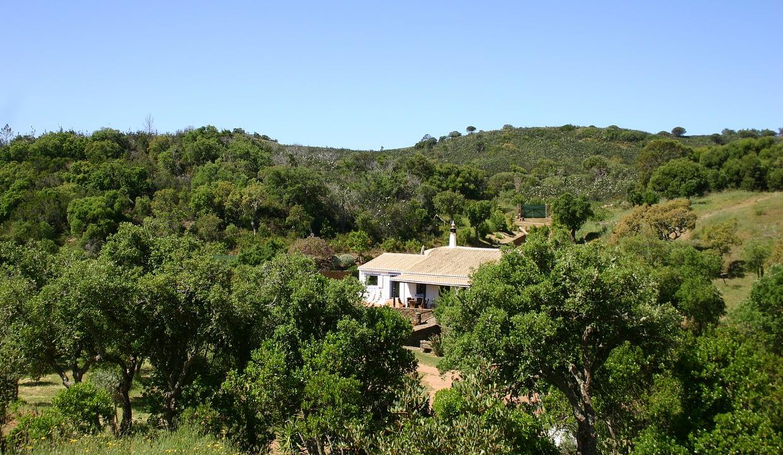 Tripalgarve immobilier albufeira algarve portugal TANH0007Q_9