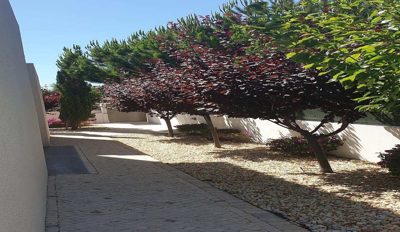 Tripalgarve immobilier albufeira algarve portugal TADD0019V_20200703_160423